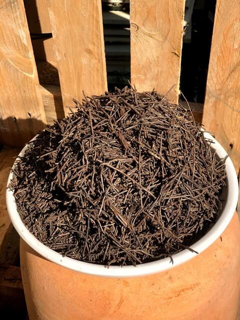 Dớn vụn trồng lan có độ thoáng khí và giữ ẩm cao