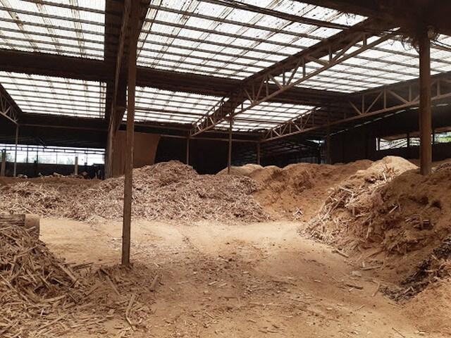 Hà Nội có nhiều bán sản xuất và cung cấp mùn cưa lớn