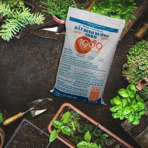 Đất dinh dưỡng 1989 thích hợp với điều kiện phát triển của hoa hồng