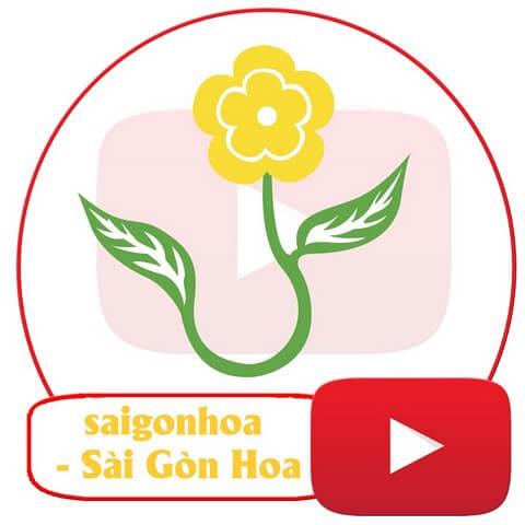 Sài Gòn Hoa là điểm cung cấp cả đất trồng hoa hồng và dụng cụ gieo trồng