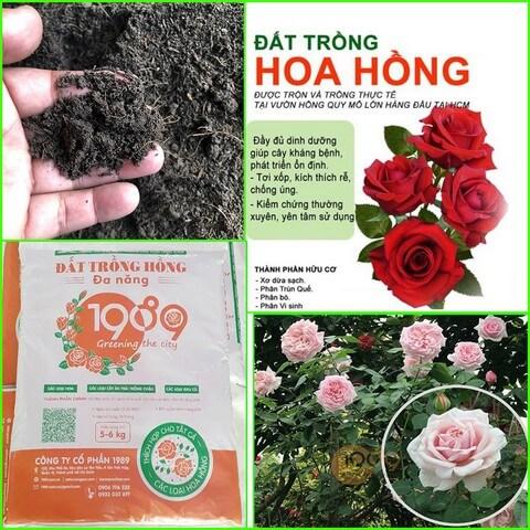 Đất trồng hoa hồng trộn sẵn Organic 1989 cũng đang được ưa chuộng