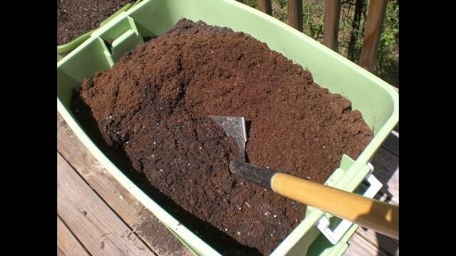 Mùn cưa nên trộn cùng với đất theo đúng tỷ lệ để trồng cây hiệu quả