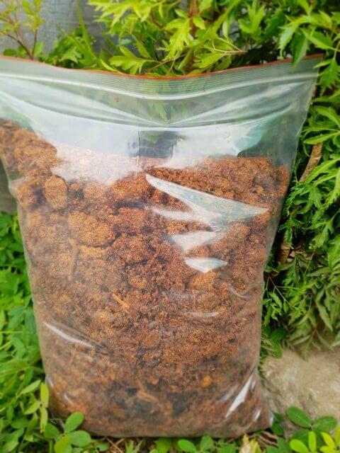 Sản phẩm mùn cưa đã xử lý bằng men vi sinh có bán trên thị trường dùng trồng rau