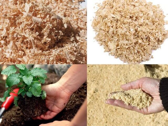 Trộn mùn cưa với đất là kỹ thuật đơn giản nhưng rất hiệu quả