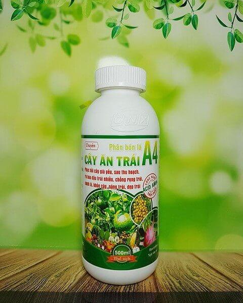 Phân bón lá A4 là sản phẩm phân bón hữu cơ an toàn cho chất lượng trái thu hoạch