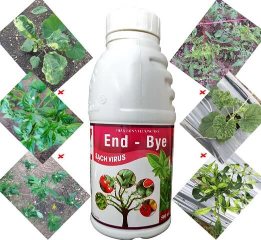 Phân bón lá End Bye có công dụng chủ yếu là phòng và diệt bệnh cho cây trồng