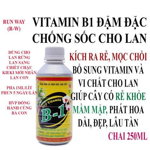 Phân bón lá HVP vitamin B1 chứa nguồn dinh dưỡng dồi dào
