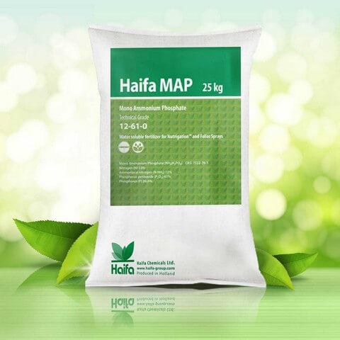 Phân bón lá Haifa MAP có thể kết hợp thuốc trừ sâu vừa tăng hiệu quả vừa giảm độc hại