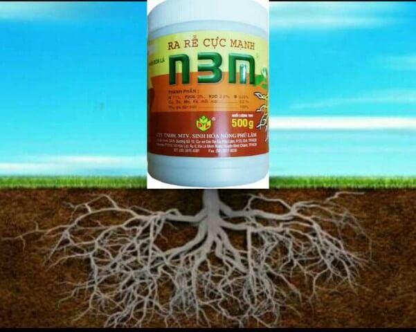 Phân bón lá ra rễ cực mạnh N3M thích hợp tưới gốc, phun tán và xử lý chiết cành