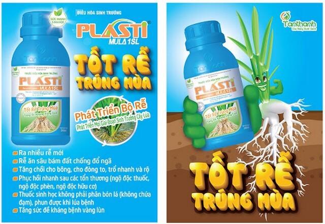 Phân bón lá Plasti kích rễ lúa phát triển mạnh, tăng khả năng hút dinh dưỡng