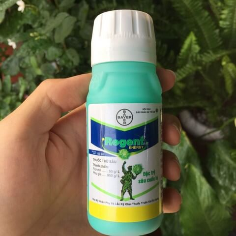 Thuốc trừ sâu Regent được bán cả ở dạng bột và dung dịch đậm đặc