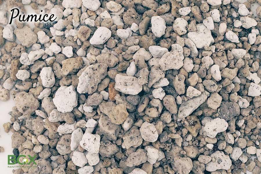 Đá bọt núi lửa Pumice