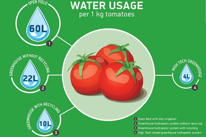 Tiết kiệm nước bằng canh tác thủy canh tuần hoàn