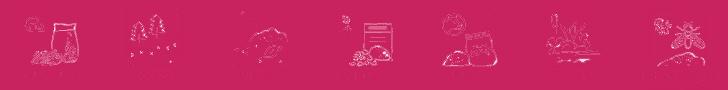 Thành phần trong đất trồng hoa hồng tropical premium
