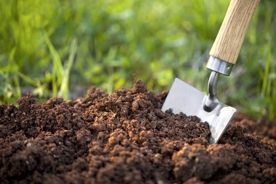 Cách cải tạo đất cho tơi xốp đơn giản, hiệu quả