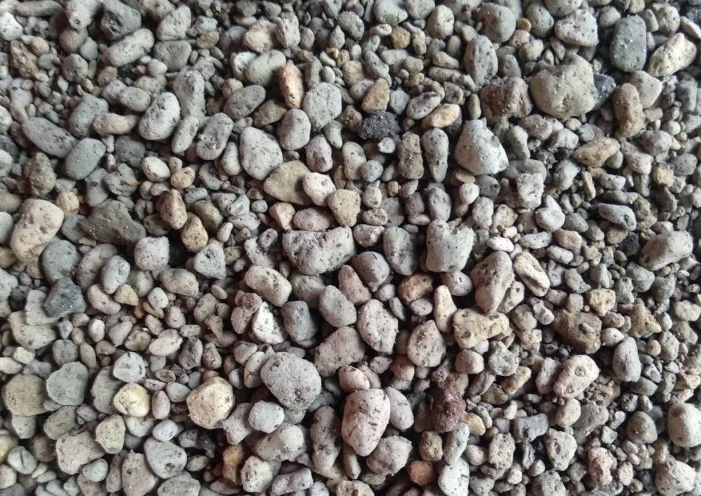 Công dụng của đá Pumice trong giá thể trồng lan
