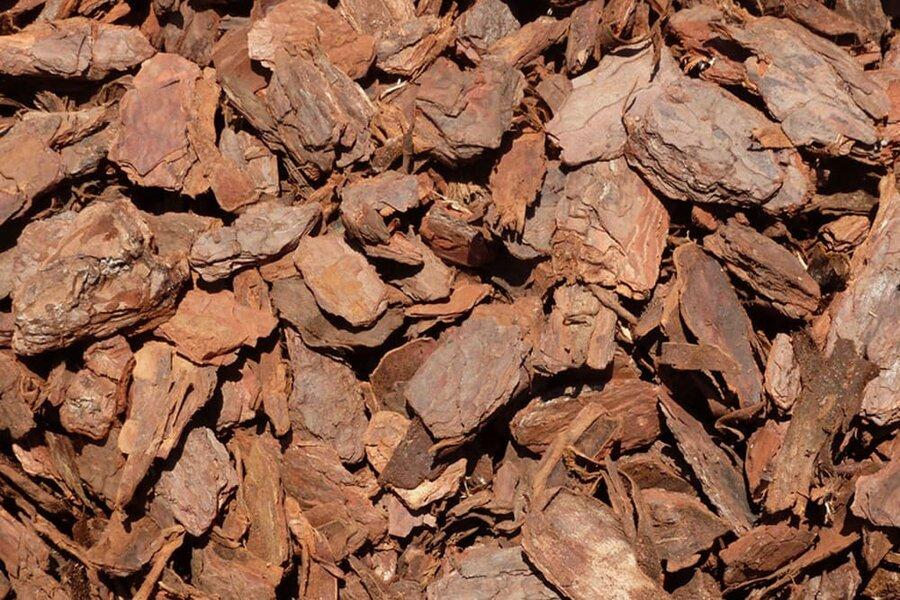 Nguyên liệu sản xuất đất sạch đóng bao: Vỏ thông