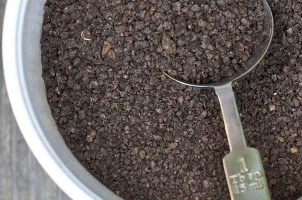 Cách dùng phân dơi bón hoa lan cực tốt, bạn đã biết chưa?