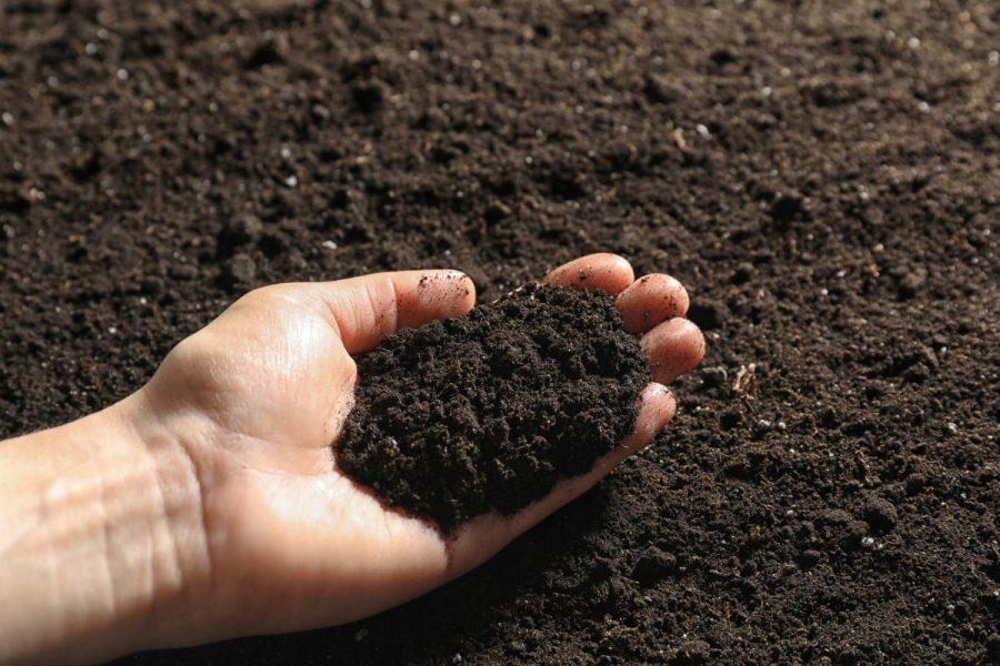 nguyên liệu sản xuất đất sạch đóng bao than bùn