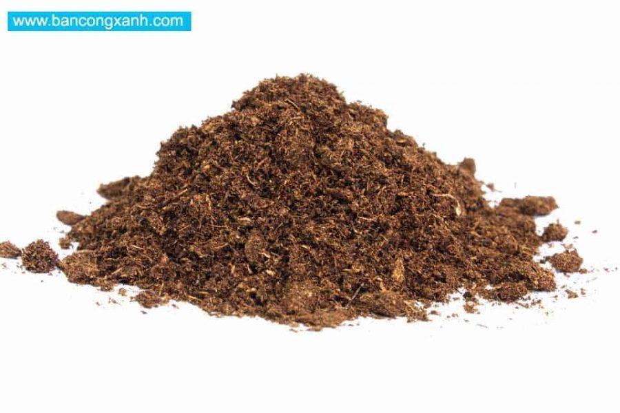 Nguyên liệu sản xuất đất sạch đóng bao: Rêu than bùn (peatmoss)