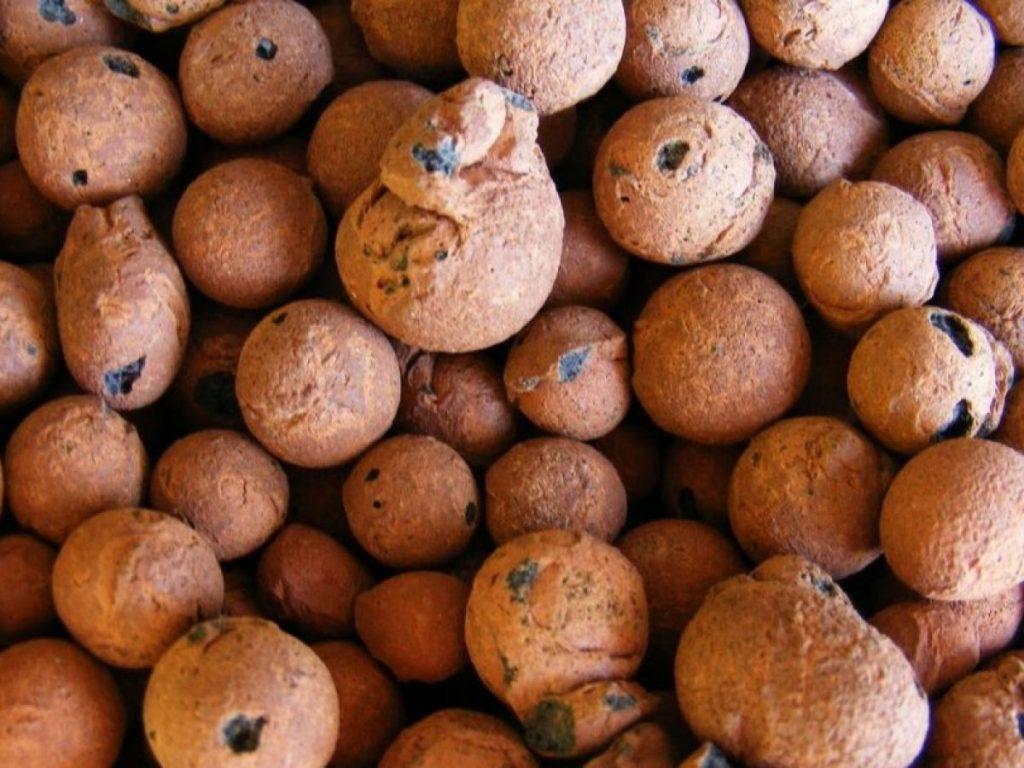 Công dụng của viên đất nung trong giá thể trồng lan