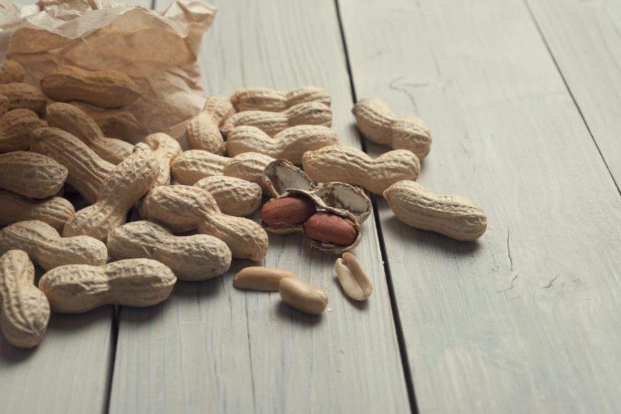Công dụng của vỏ đậu phộng trong giá thể trồng lan